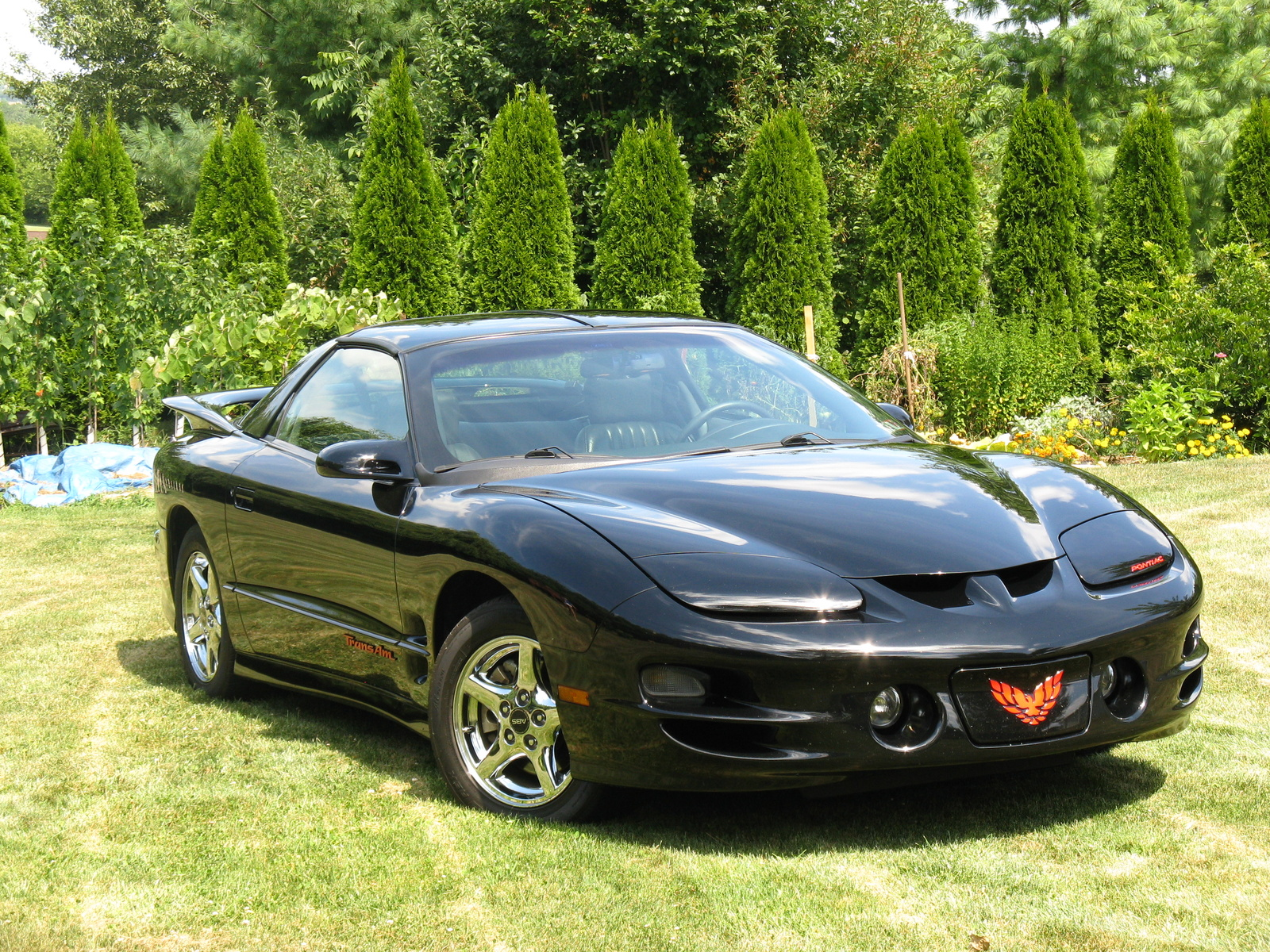 1998 Pontiac Trans Am, Muscle Car