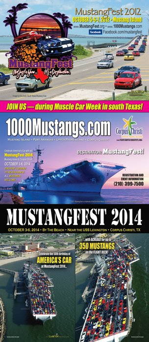 Mustang Festival in Texas