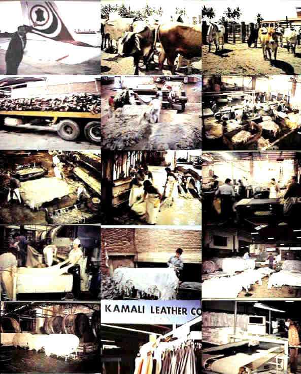 Kamali Leather Production Process