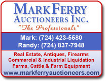 Mark Ferry 